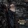 EUROPESE OMROEP | Walls - Barbra Streisand