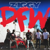 Ziggy - DFW