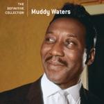 Muddy Waters - I Feel Like Going Home