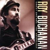 Roy Buchanan - Five String Blues