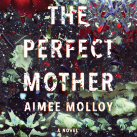 The Perfect Mother: A Novel (Unabridged) audiobook