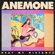 Beat My Distance - Anemone