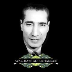 Avazhaye Adib Khansari (feat. Ebrahim Sarkhosh)