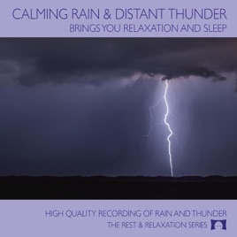 Calming Rain and Distant Thunder: Brings You Relaxation and Sleep by