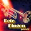 Velvet Lounge Project - On the Run (Pete Dingon Instrumental Mix) artwork