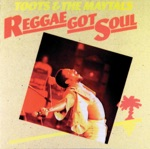 Toots & The Maytals - Reggae Got Soul