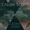 Calum Scott & Leona Lewis - You Are the Reason (Duet Version) artwork