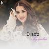 Dilso'z - Sog'indim artwork