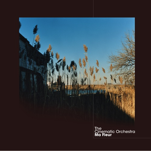 The Cinematic Orchestra - Flowers - Single