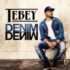 Tebey - Denim on Denim artwork