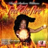 Feel the Fire - Single