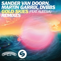 Gold Skies (Remixes) [feat. Aleesia] - EP Mp3 Download