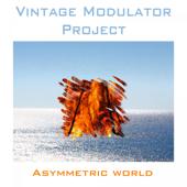 Asymmetric World