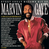 Marvin Gaye - Every Great Motown Hit of Marvin Gaye  artwork