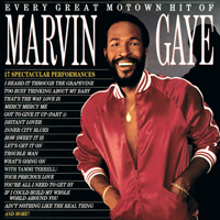 Marvin Gaye - Every Great Motown Hit of Marvin Gaye artwork