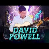 Relationship Is Still Alive - David Powell