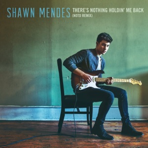 There's Nothing Holdin' Me Back (NOTD Remix) - Single Mp3 Download