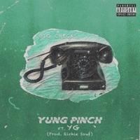 Big Checks (feat. YG) - Single Mp3 Download