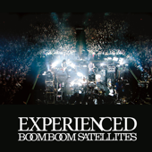 Experienced (Live Version 2010)