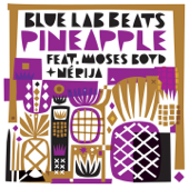 [Download] Pineapple (feat. Moses Boyd & Nérija) MP3