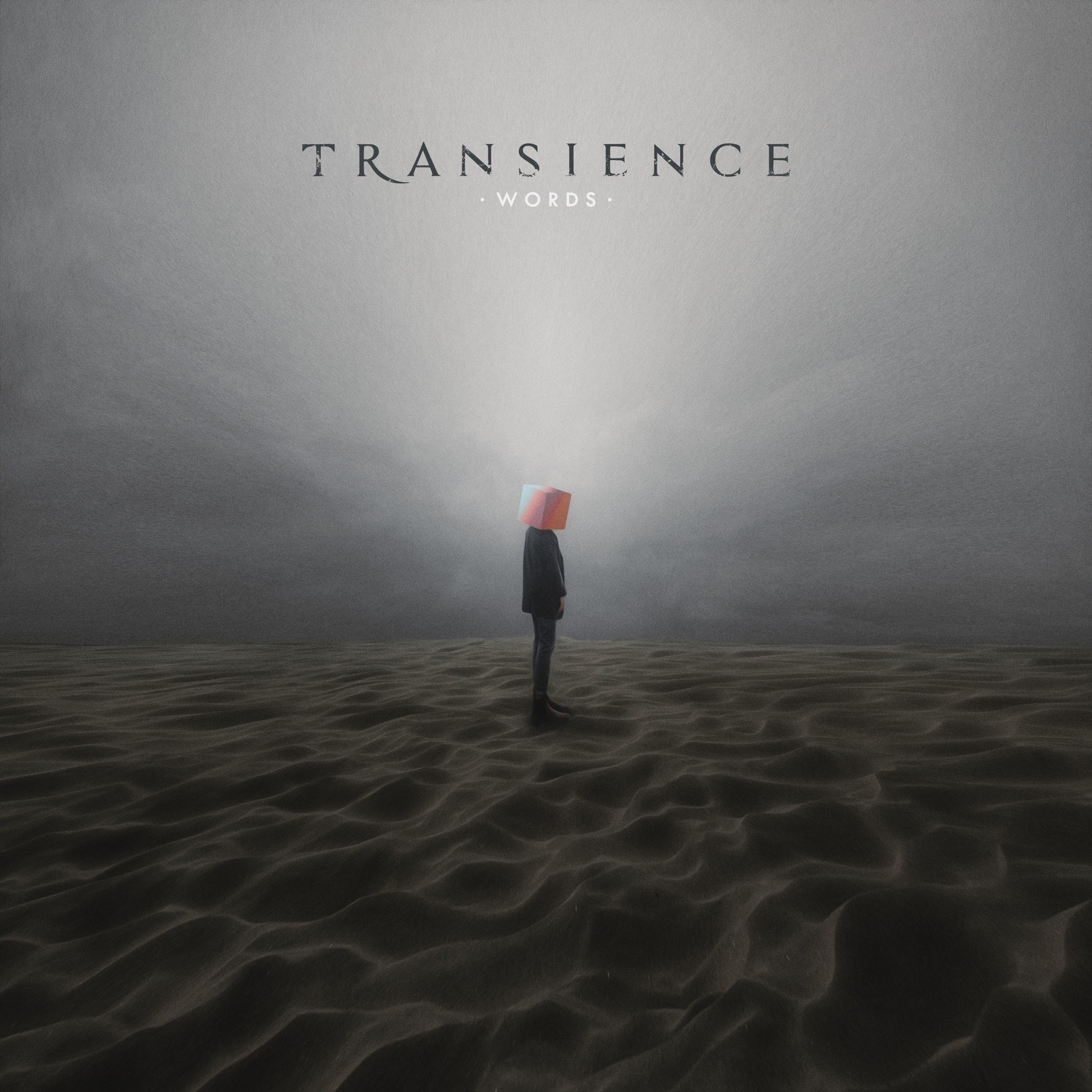 Transience - Words [single] (2018)