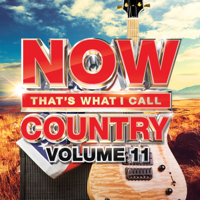 NOW That's What I Call Country, Vol. 11
