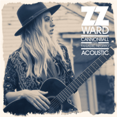 Cannonball (feat. Fantastic Negrito) [Acoustic]
