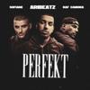 Perfekt feat Sofiane - Raf Camora & AriBeatz mp3