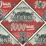 Flowering Inferno & Quantic - 1000 Watts [feat. Christopher Ellis]