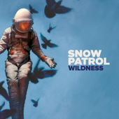 Snow Patrol - Wildness (Deluxe)  artwork