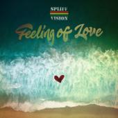 Feeling Of Love-Spliff Vision