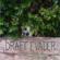 In My Mind - Draft Evader