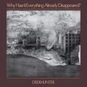 Deerhunter - What Happens to People?