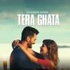 Tera Ghata Single