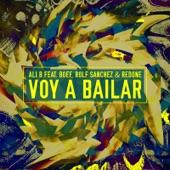 Voy a Bailar (feat. Boef & Rolf Sanchez) - Single