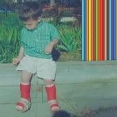 Ritt Momney - Pollution / Disclaimer