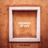 Piotr Miteska - Squares of Life artwork