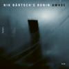 Awase - Nik Bärtsch's Ronin