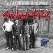 The Swampers - Don't Bug Me Johnson