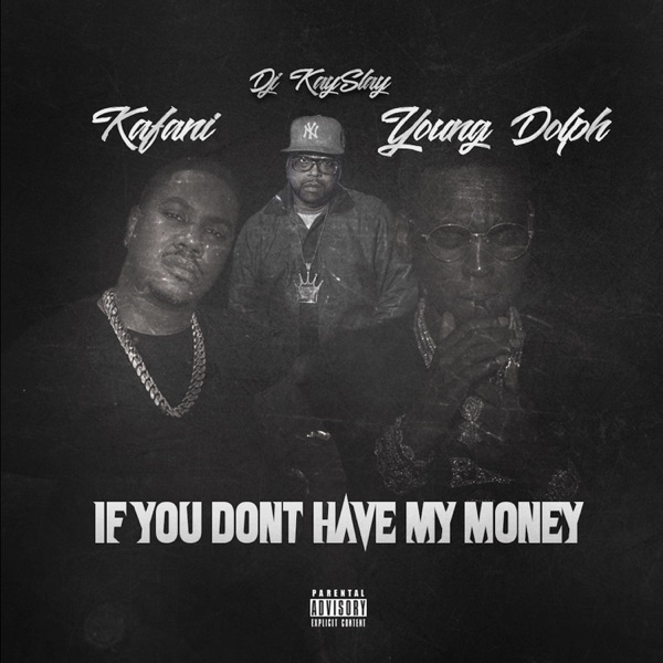 If You Don't Have My Money (feat. DJ Kay Slay & Young Dolph) - Single