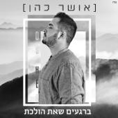 ברגעים שאת הולכת - Osher Cohen