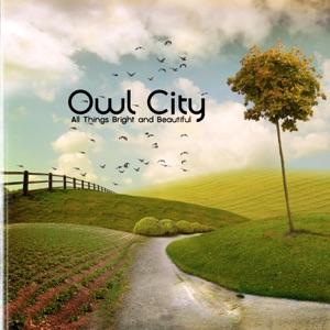 Owl City - Alligator Sky