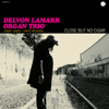 Delvon Lamarr Organ Trio - Close but No Cigar  artwork