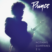 Nothing Compares 2 U-Prince