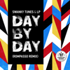 Day By Day (Rompasso Remix) - Swanky Tunes & LP