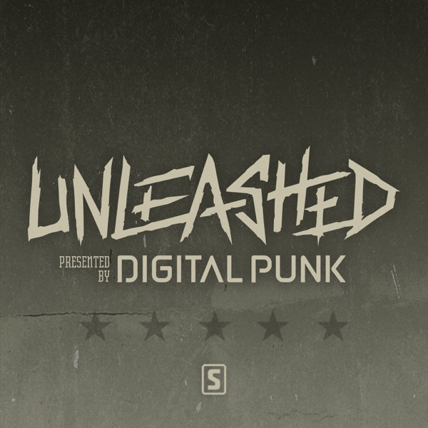 Digital Punk - Unleashed