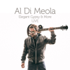 Al Di Meola - Elegant Gypsy & More (Live)  artwork