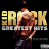 Kid Rock - Greatest Hits: You Never Saw Coming  artwork
