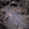 Alesana - The Lost Chapters - EP ジャケット写真