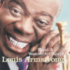 Louis Armstrong - What a Wonderful World bild